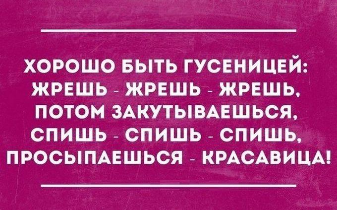 20-otkrytok-sarkazmov-1