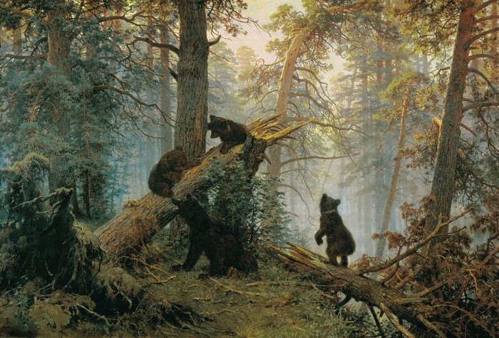 utro-v-sosnovom-lesu