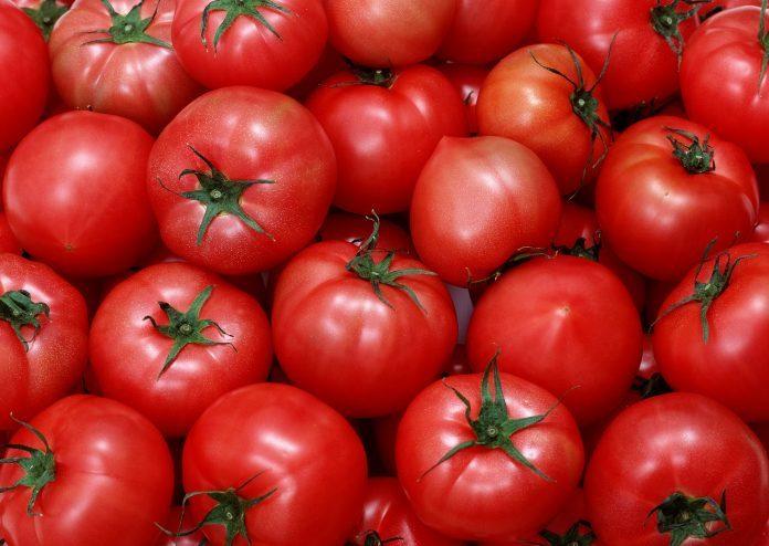 pomidory-pritchi