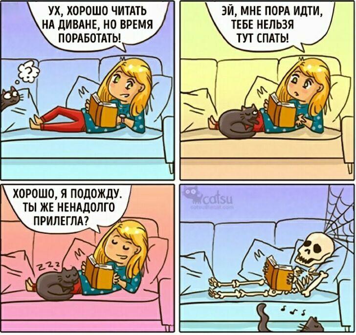 zavelsya-kot-12