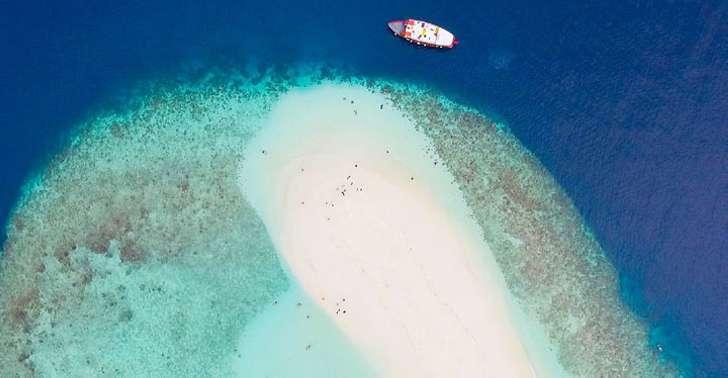 Босс этой фирмы потратил 500 тысяч долларов и оплатил всем сотрудникам отпуск на Мальдивах
