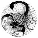 Самые сильные знаки зодиака - миф или реальность? Оказывается, звезды знают чуть больше...