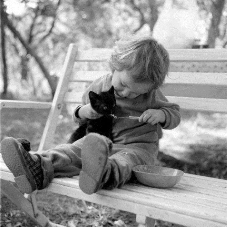 Если вы думаете, что животные плохо уживаются с детьми, то взгляните на эти фото!