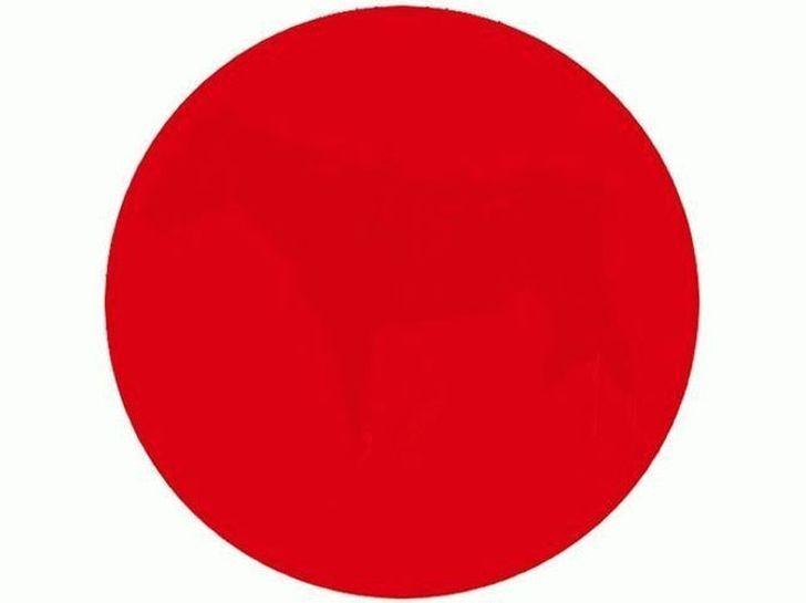 Испытайте зрение: видите что-нибудь внутри этого красного круга?