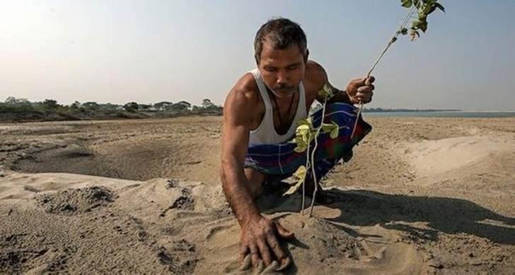 Когда он решил посадить бамбук посреди пустыни, над ним все смеялись! Спустя 37 лет его имя уже знал весь мир