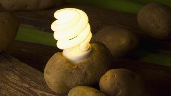 Картофель поможет сэкономить деньги и освещать комнату в течение месяца.