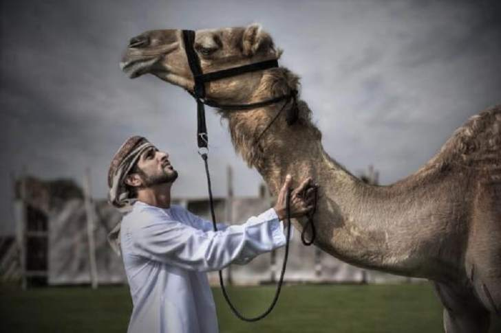 Вот как проходят трудовые будни сказочно богатого принца Дубая. Нам и не снилось!