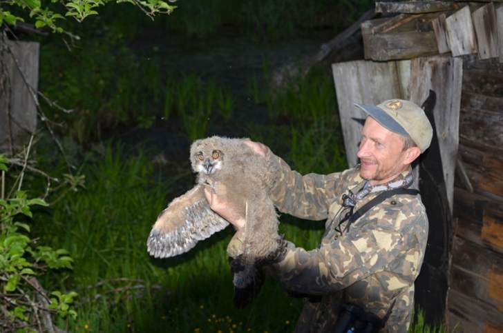 Камеры фотоловушек в Чернобыле фиксируют невероятные вещи