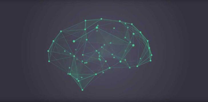 Учёные нашли гены, связанные с формированием интеллекта