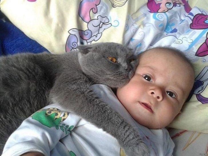 Дети и коты - Самые забавные моменты общения