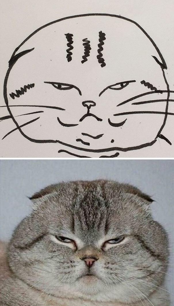 Когда учитель рисования говорит, что вы не умеете рисовать кошек, - не верьте! Суперреалистичные рисунки кошек