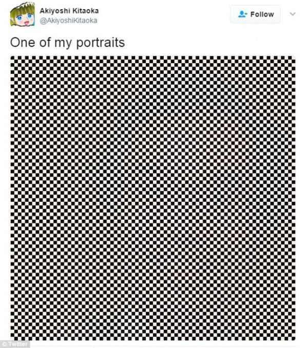 Портрет учёного - оптическая иллюзия