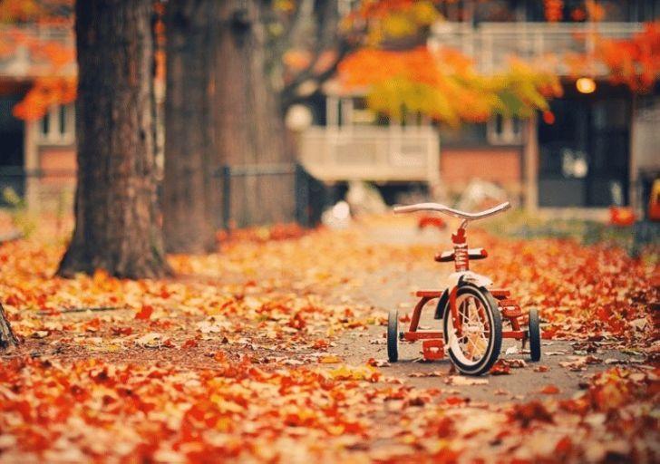 Осень это - счастье